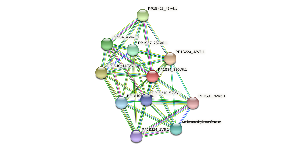 PP1S34_360V6.1 protein (Physcomitrella patens) - STRING interaction network