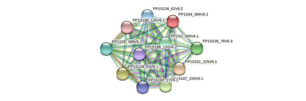 PP1S34_364V6.1 protein (Physcomitrella patens) - STRING interaction network