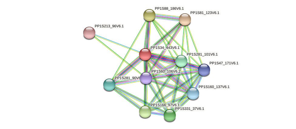 PP1S34_443V6.1 protein (Physcomitrella patens) - STRING interaction network