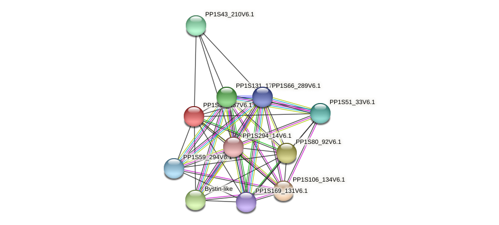 PP1S34_457V6.1 protein (Physcomitrella patens) - STRING interaction network