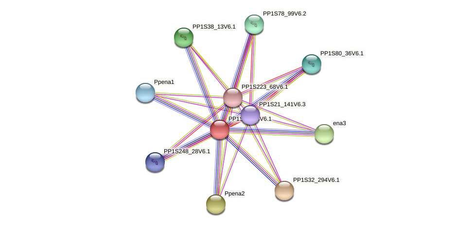 PP1S34_48V6.1 protein (Physcomitrella patens) - STRING interaction network