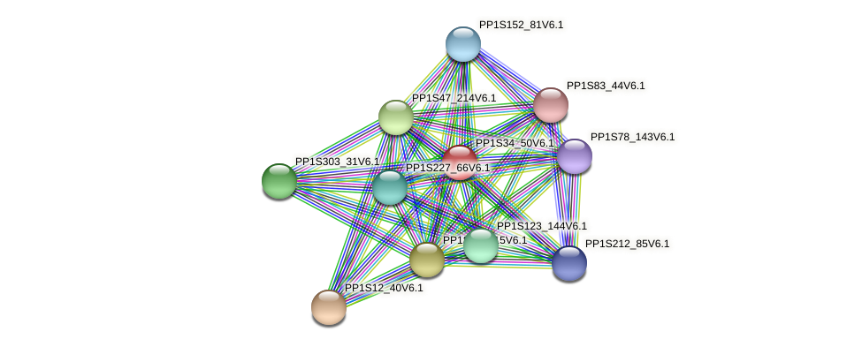 PP1S34_50V6.1 protein (Physcomitrella patens) - STRING interaction network