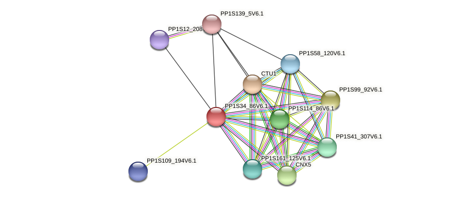 PP1S34_86V6.1 protein (Physcomitrella patens) - STRING interaction network