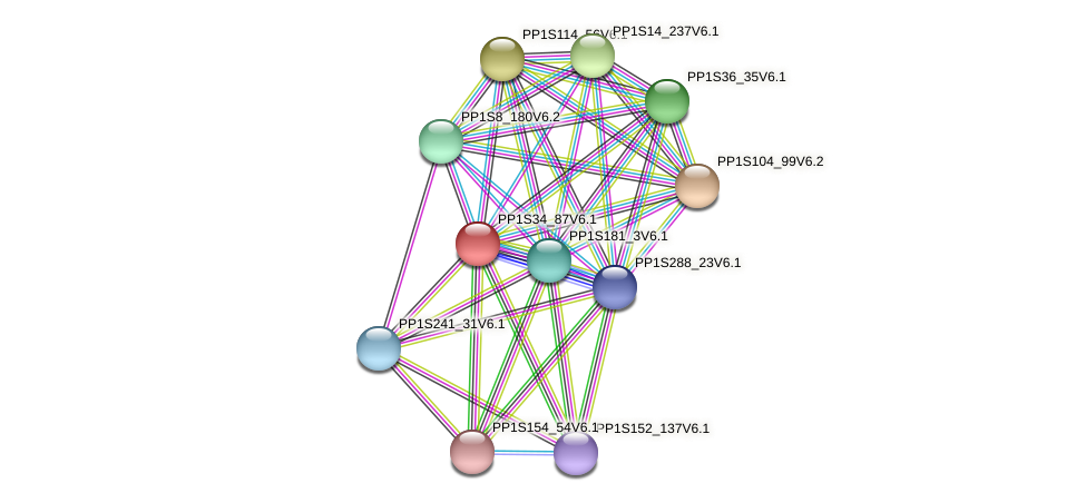 PP1S34_87V6.1 protein (Physcomitrella patens) - STRING interaction network