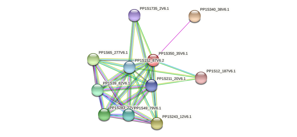 PP1S350_35V6.1 protein (Physcomitrella patens) - STRING interaction network