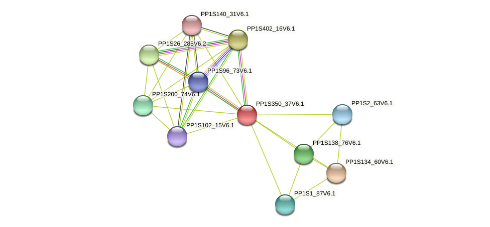 PP1S350_37V6.1 protein (Physcomitrella patens) - STRING interaction network