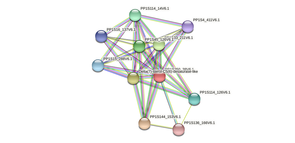 PP1S350_38V6.1 protein (Physcomitrella patens) - STRING interaction network