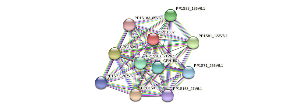 CPD1502 protein (Physcomitrella patens) - STRING interaction network