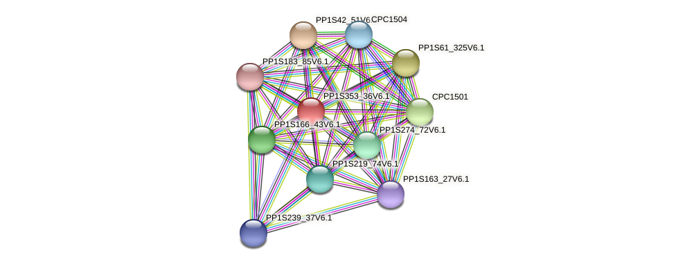 PP1S353_36V6.1 protein (Physcomitrella patens) - STRING interaction network