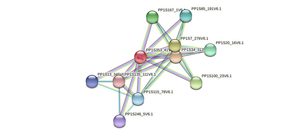 PP1S353_41V6.1 protein (Physcomitrella patens) - STRING interaction network