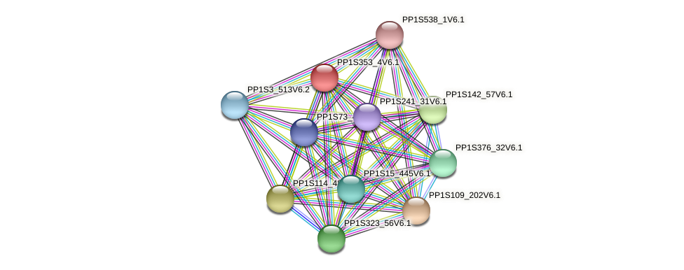PP1S353_4V6.1 protein (Physcomitrella patens) - STRING interaction network