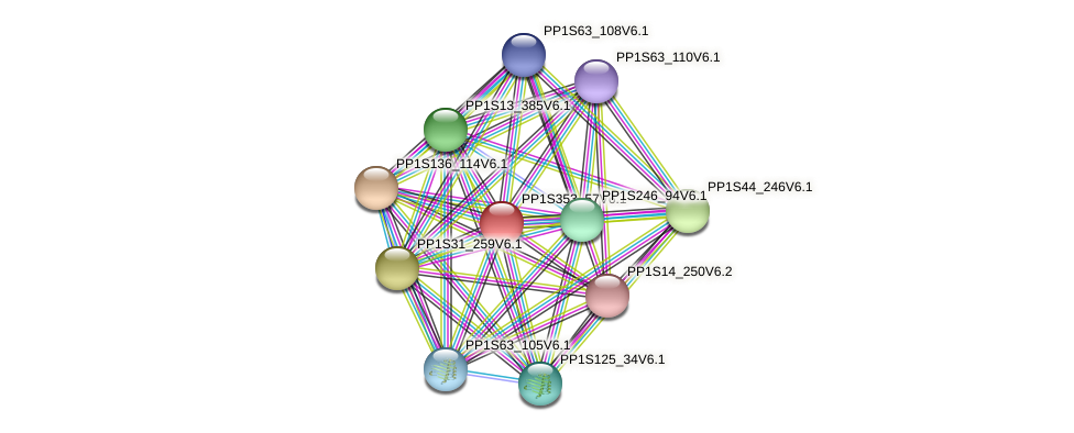 PP1S353_57V6.1 protein (Physcomitrella patens) - STRING interaction network