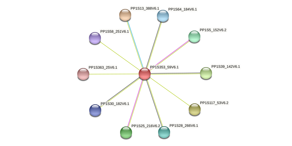 PP1S353_59V6.1 protein (Physcomitrella patens) - STRING interaction network