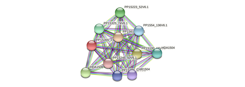 PP1S355_21V6.1 protein (Physcomitrella patens) - STRING interaction network