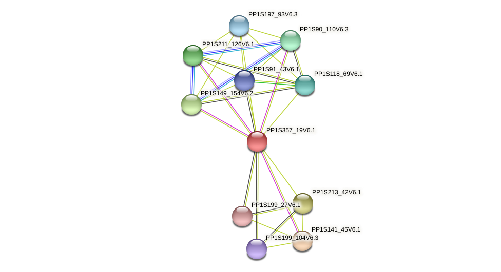 PP1S357_19V6.1 protein (Physcomitrella patens) - STRING interaction network