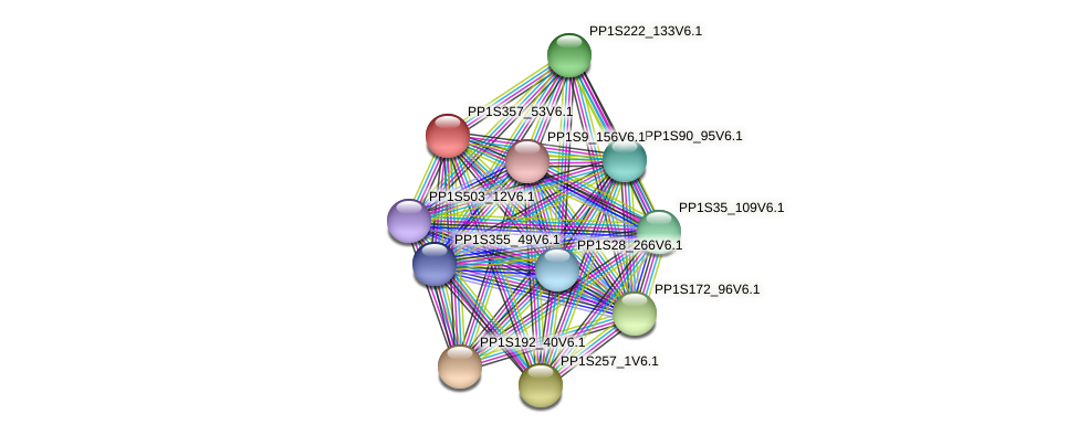 PP1S357_53V6.1 protein (Physcomitrella patens) - STRING interaction network
