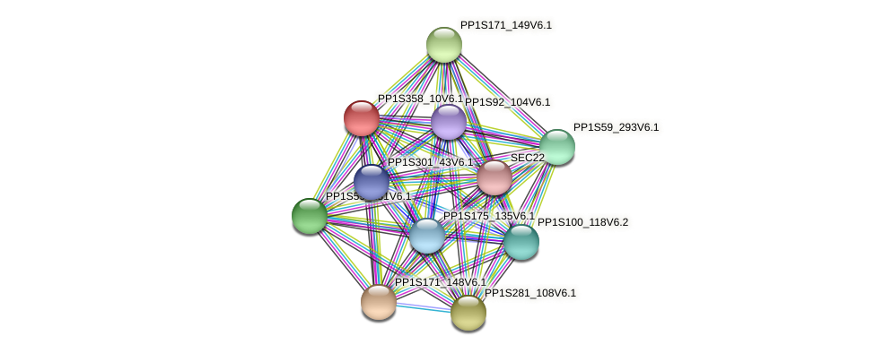 PP1S358_10V6.1 protein (Physcomitrella patens) - STRING interaction network