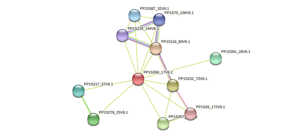 PP1S358_17V6.2 protein (Physcomitrella patens) - STRING interaction network