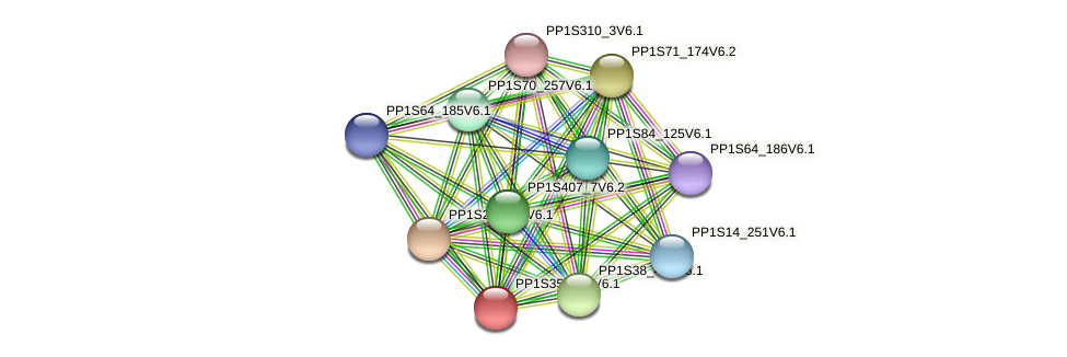 PP1S358_20V6.1 protein (Physcomitrella patens) - STRING interaction network