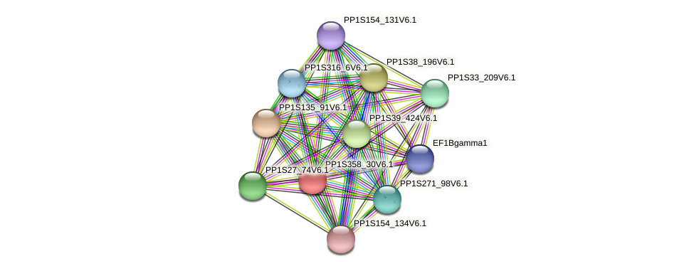 PP1S358_30V6.1 protein (Physcomitrella patens) - STRING interaction network