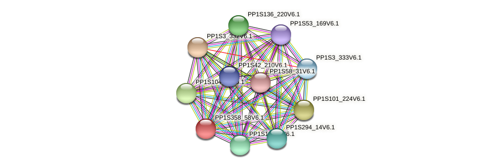 PP1S358_58V6.1 protein (Physcomitrella patens) - STRING interaction network