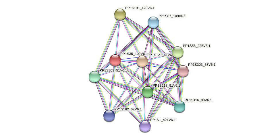 PP1S35_102V6.1 protein (Physcomitrella patens) - STRING interaction network