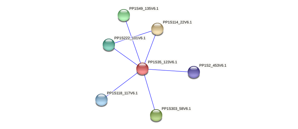 PP1S35_123V6.1 protein (Physcomitrella patens) - STRING interaction network