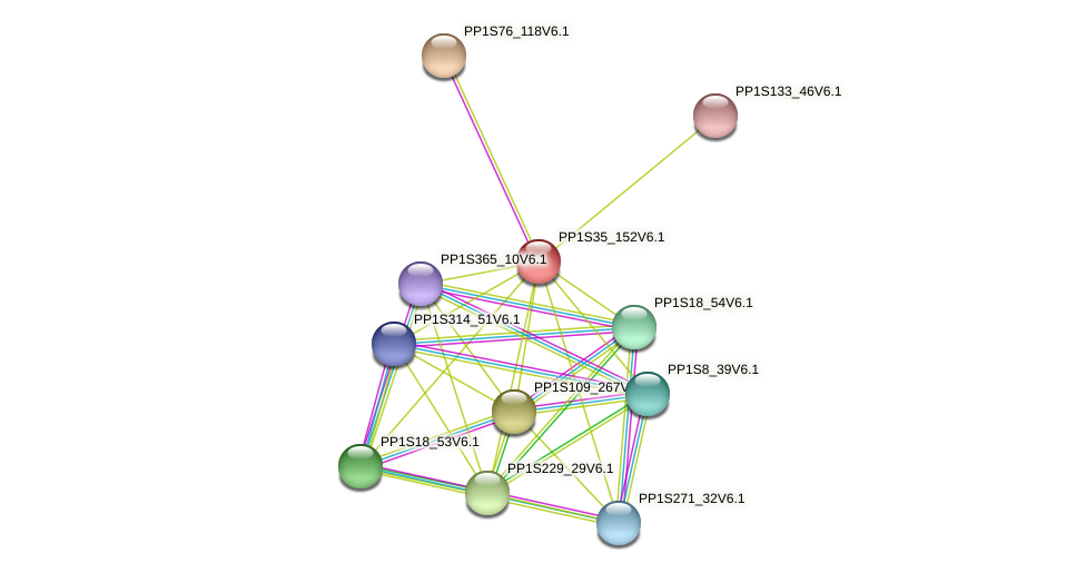 PP1S35_152V6.1 protein (Physcomitrella patens) - STRING interaction network