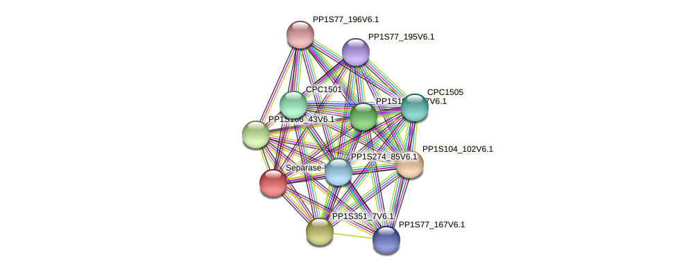 PP1S35_174V6.1 protein (Physcomitrella patens) - STRING interaction network