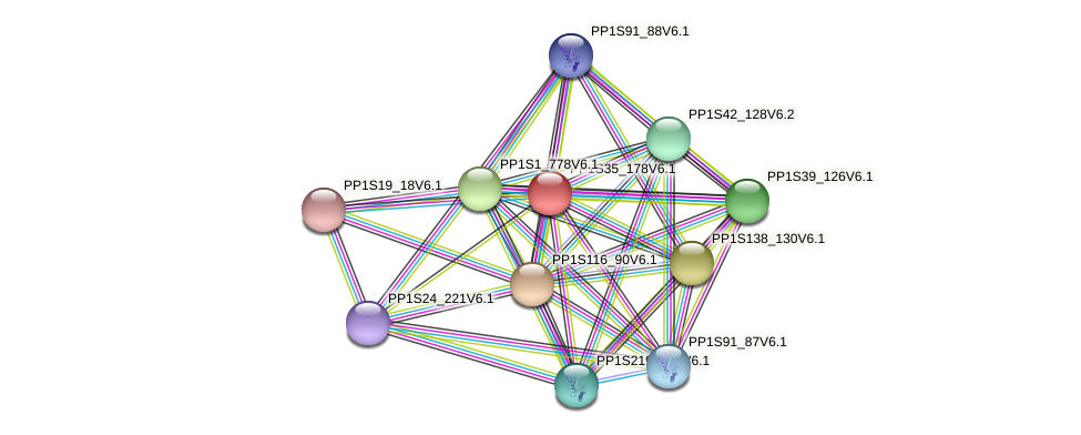 PP1S35_178V6.1 protein (Physcomitrella patens) - STRING interaction network