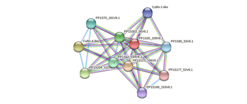 PP1S35_209V6.1 protein (Physcomitrella patens) - STRING interaction network