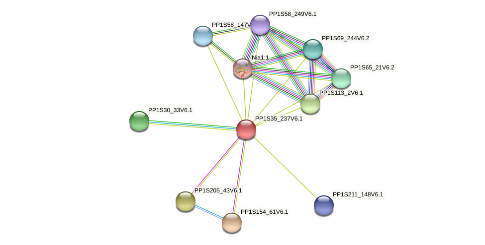 PP1S35_237V6.1 protein (Physcomitrella patens) - STRING interaction network