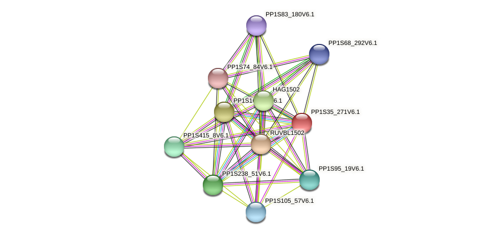 PP1S35_271V6.1 protein (Physcomitrella patens) - STRING interaction network
