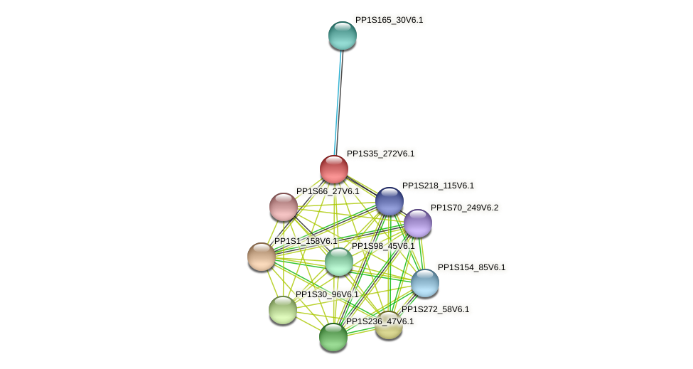 PP1S35_272V6.1 protein (Physcomitrella patens) - STRING interaction network