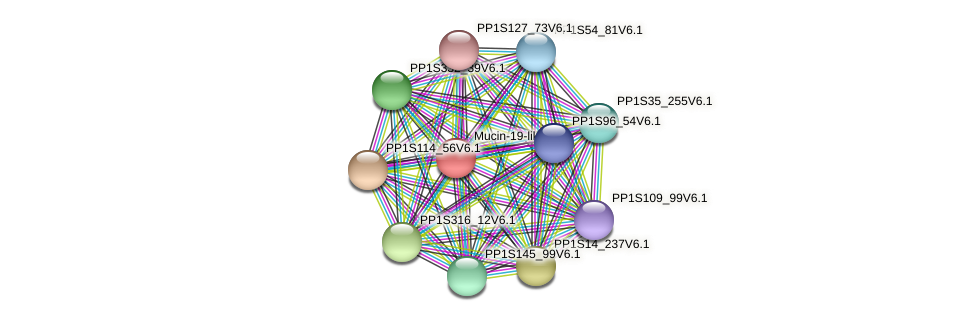 PP1S35_278V6.1 protein (Physcomitrella patens) - STRING interaction network