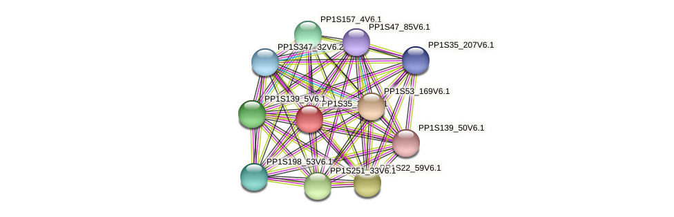 PP1S35_285V6.1 protein (Physcomitrella patens) - STRING interaction network