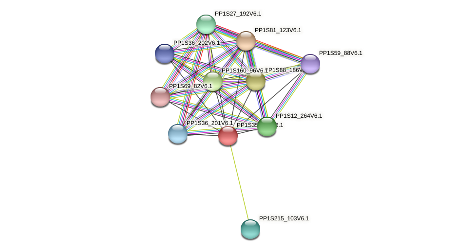 PP1S35_305V6.1 protein (Physcomitrella patens) - STRING interaction network