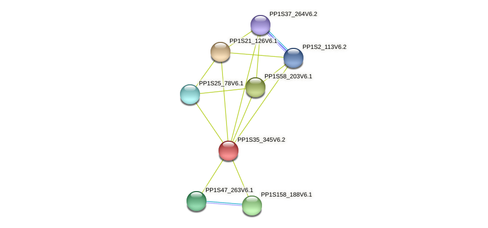 PP1S35_345V6.2 protein (Physcomitrella patens) - STRING interaction network
