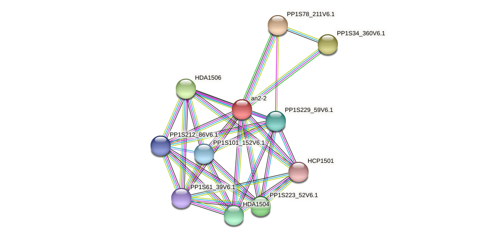 PP1S35_361V6.1 protein (Physcomitrella patens) - STRING interaction network
