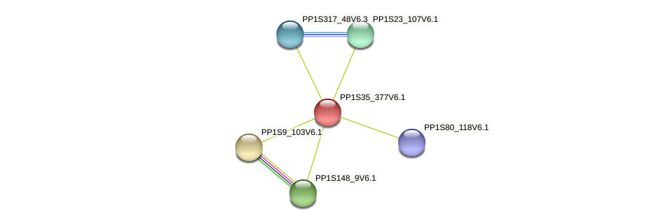 PP1S35_377V6.1 protein (Physcomitrella patens) - STRING interaction network