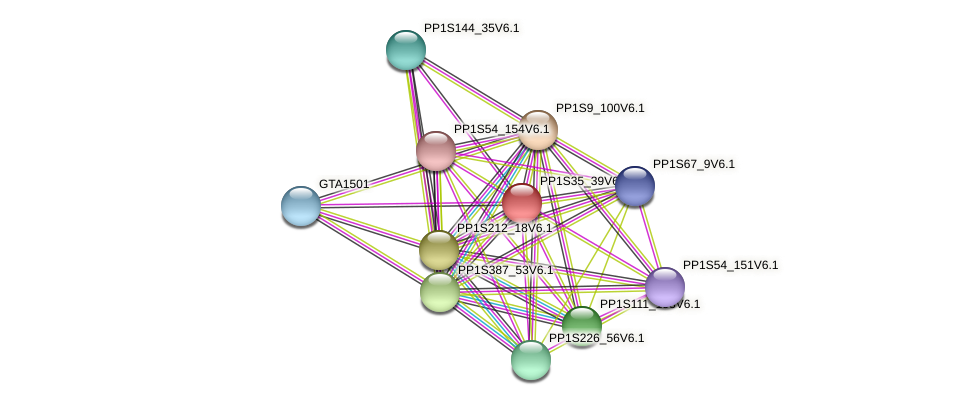 PP1S35_39V6.1 protein (Physcomitrella patens) - STRING interaction network