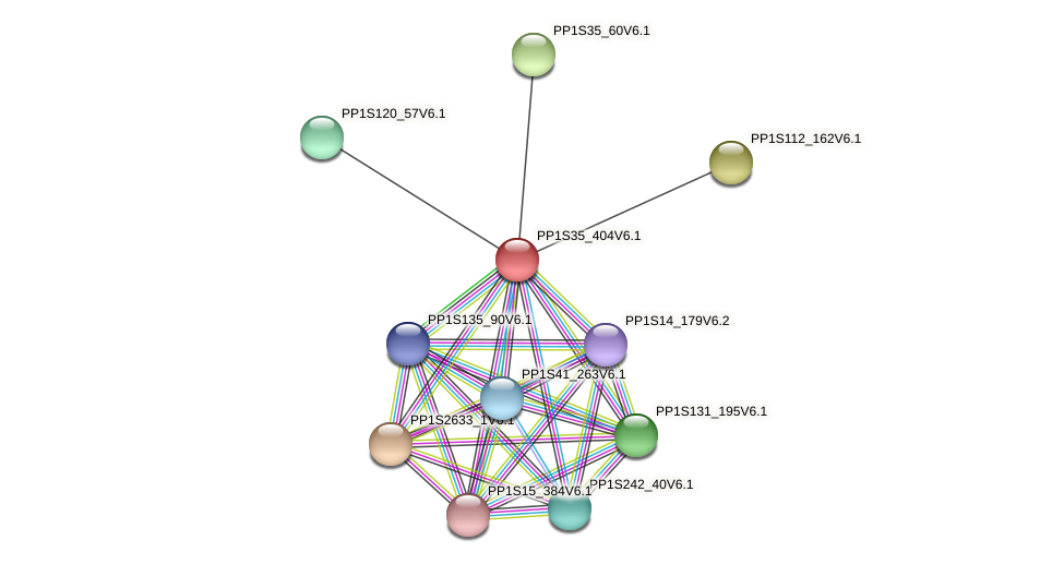 PP1S35_404V6.1 protein (Physcomitrella patens) - STRING interaction network