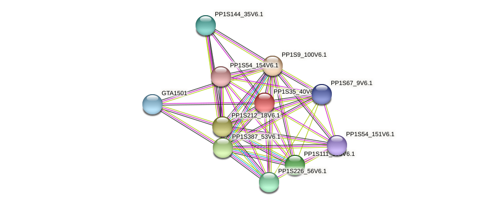 PP1S35_40V6.1 protein (Physcomitrella patens) - STRING interaction network