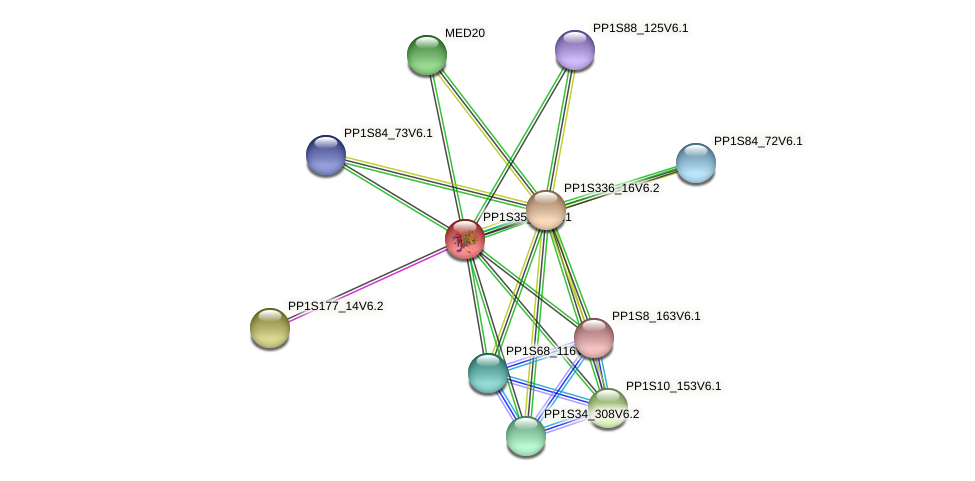 PP1S35_49V6.1 protein (Physcomitrella patens) - STRING interaction network