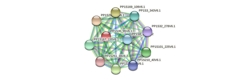 PP1S35_95V6.1 protein (Physcomitrella patens) - STRING interaction network