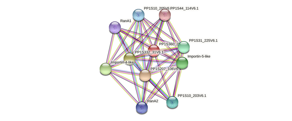 PP1S360_26V6.1 protein (Physcomitrella patens) - STRING interaction network