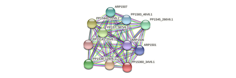 PP1S360_34V6.1 protein (Physcomitrella patens) - STRING interaction network