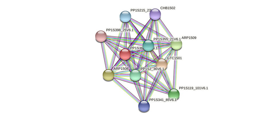 CHR1522 protein (Physcomitrella patens) - STRING interaction network