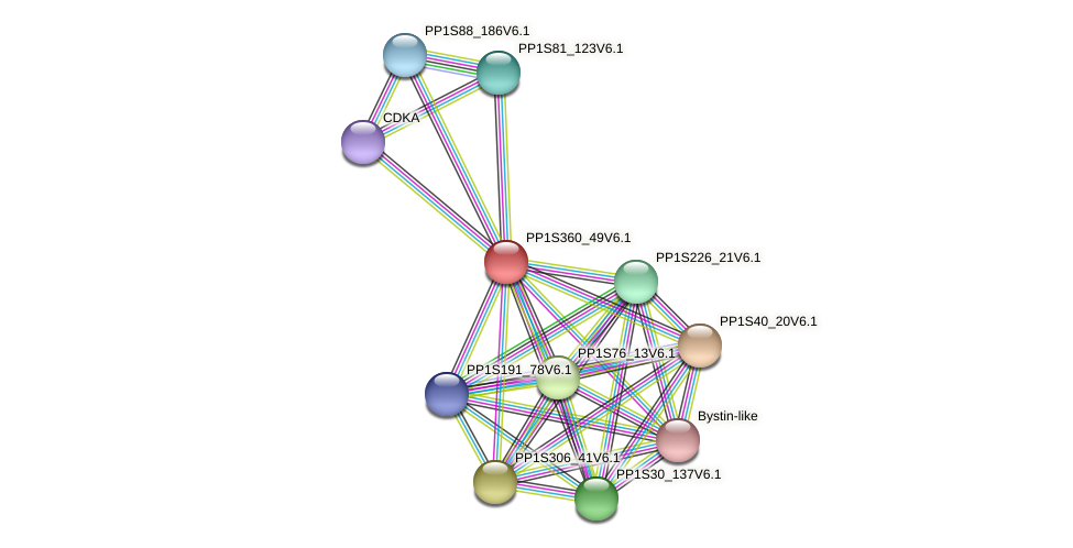 PP1S360_49V6.1 protein (Physcomitrella patens) - STRING interaction network