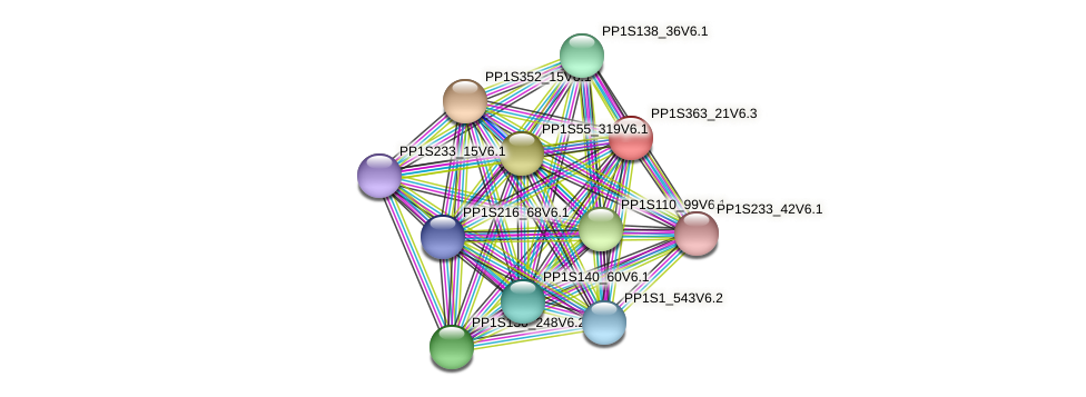 PP1S363_21V6.2 protein (Physcomitrella patens) - STRING interaction network
